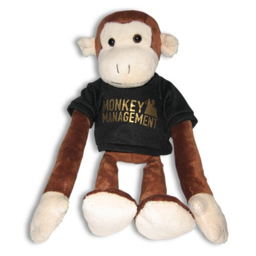Monkey Management - der Affe Charlie