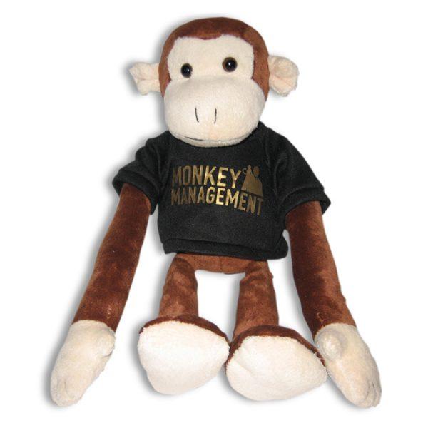 Monkey Management - der Affe Charlie